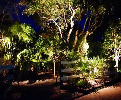 About Us Tropical Landscape Lighting